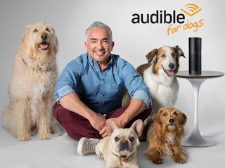 Audible for Dogs, pet care, audibooks for dogs
