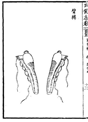 Ming Chinese Armguard