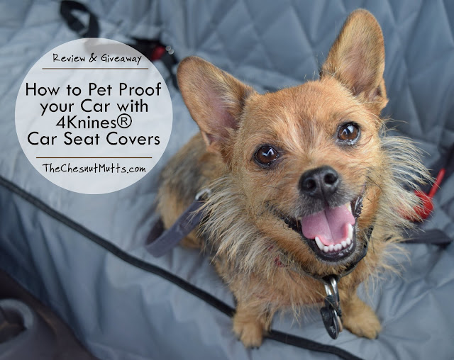 Review & Giveaway: How to Pet Proof your Car with 4Knines® Car Seat Covers