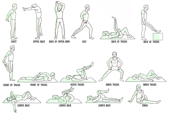 flexibility exercises - photo #9