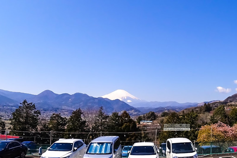matsuda-sakura-26.jpg