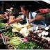 La agricultura sostenible como alternativa a los efectos de los cataclismos