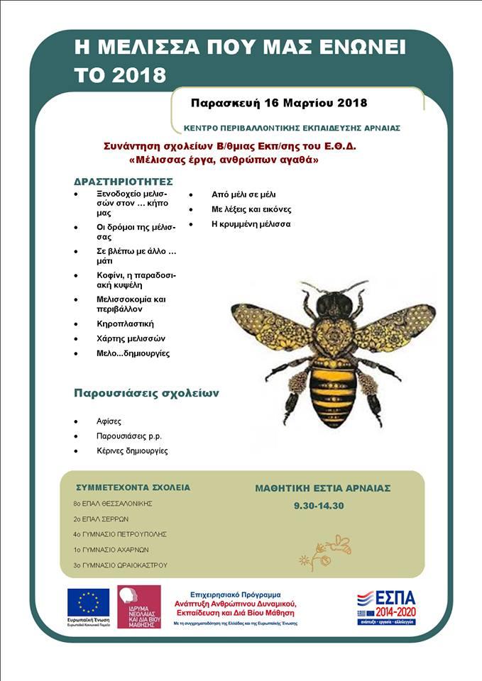 Μια μέλισσα τριγυρίζει στην Αρναία! - τριήμερο σεμινάριο εκπαιδευτικών