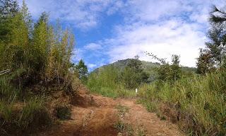 Pendakian Gunung Sigandul Via Cemoro