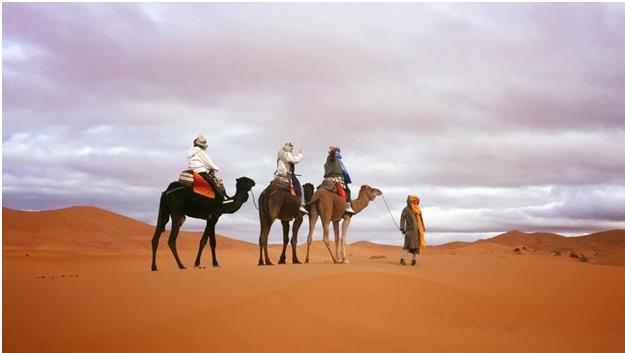 Adventurous Camping in the Sahara & Morocco with Virikson 2