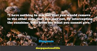 """I have nothing to ask but that you would remove to the other side, that you may not, by intercepting the sunshine, take from me what you cannot give.""  ― Diogenes"
