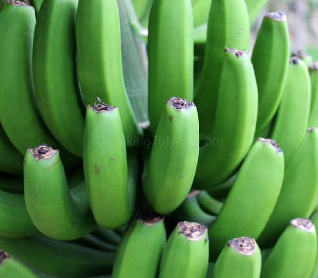 Health Benefits of Eating Green bananas (Matoke)