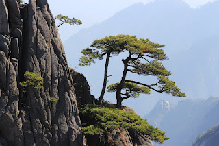 Montanhas-Huangshan-China