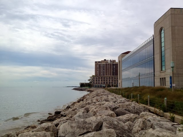 The Global Small Business Blog: Loyola University Chicago ...