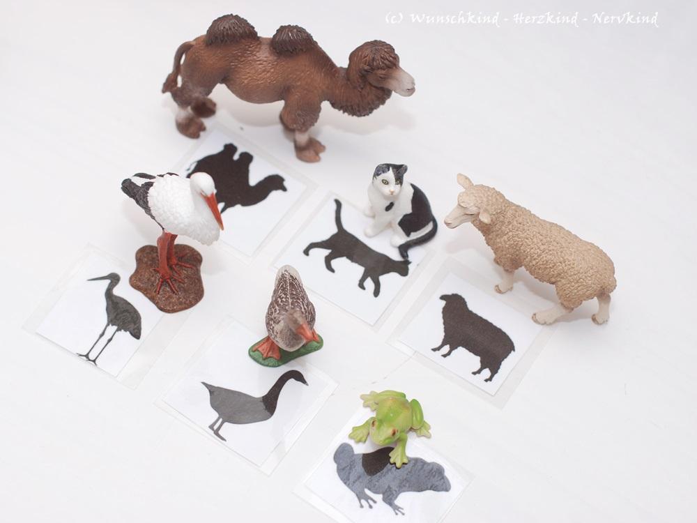 Spielanregung für Kinder nach Montessori, Silhouetten erkennen, Tierschatten erkennen