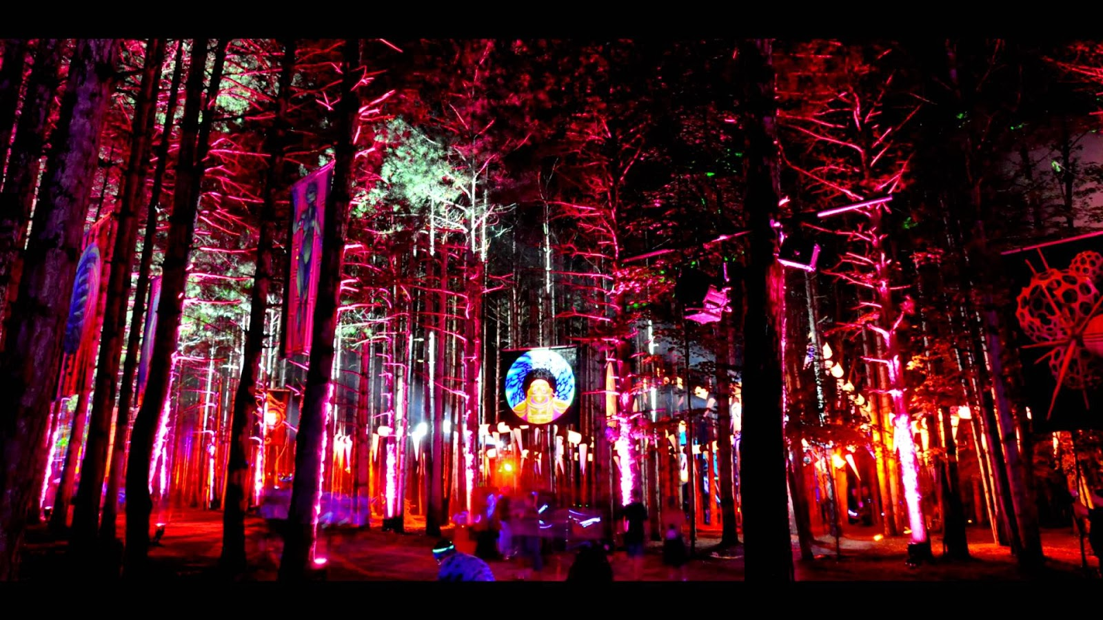 Electric Forest Hd Wallpapers Hd Wallpapers