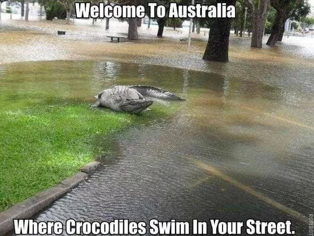 26 Shocking Photos Depict Hilarious Differences Between Britain And Australia