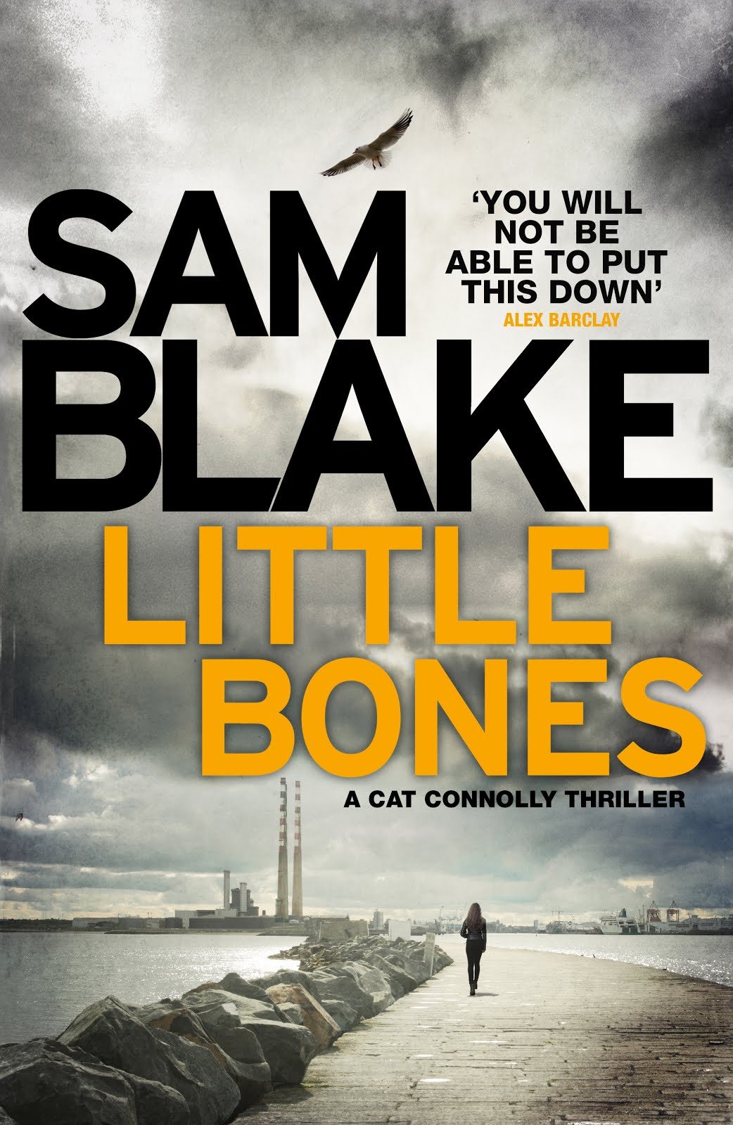Little Bones blogtour