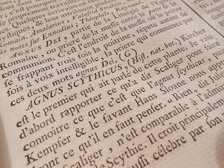 Agnus Scythicus in Diderot's Encyclopédie