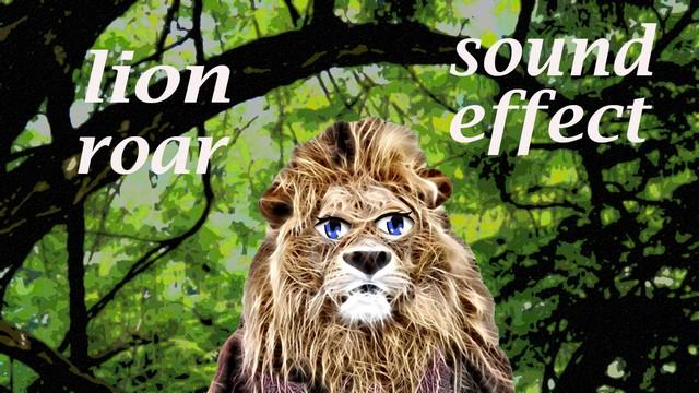 Fin Fan Fun Animal Sounds: Lion Roaring - Sound Effect