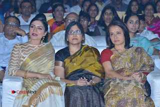 Actress Vimala Raman Stills in White Silk Saree at Om Namo Venkatesaya Audio Launch Event  0020.JPG