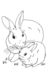 Baby Bunny Rabbit For Coloring Sheet