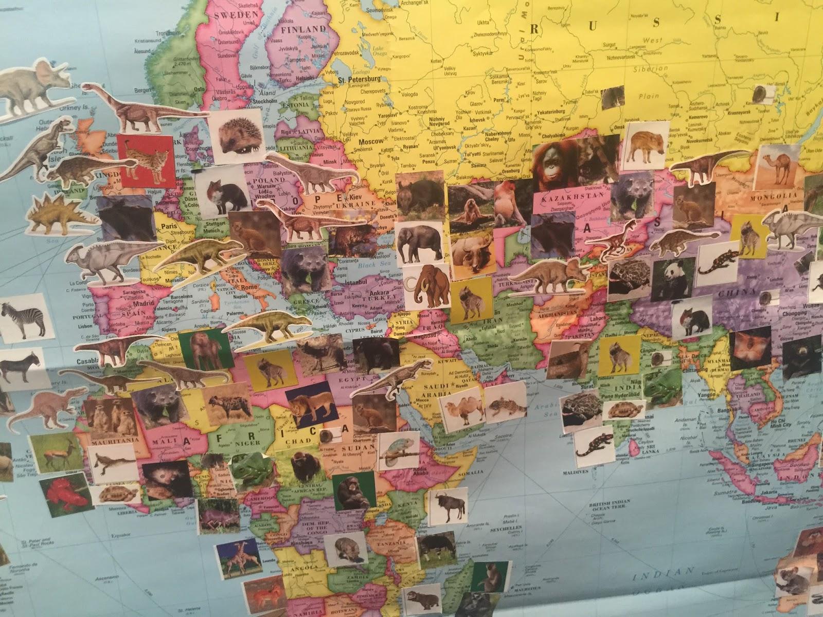 Homeschool Happenings The Seven Continents