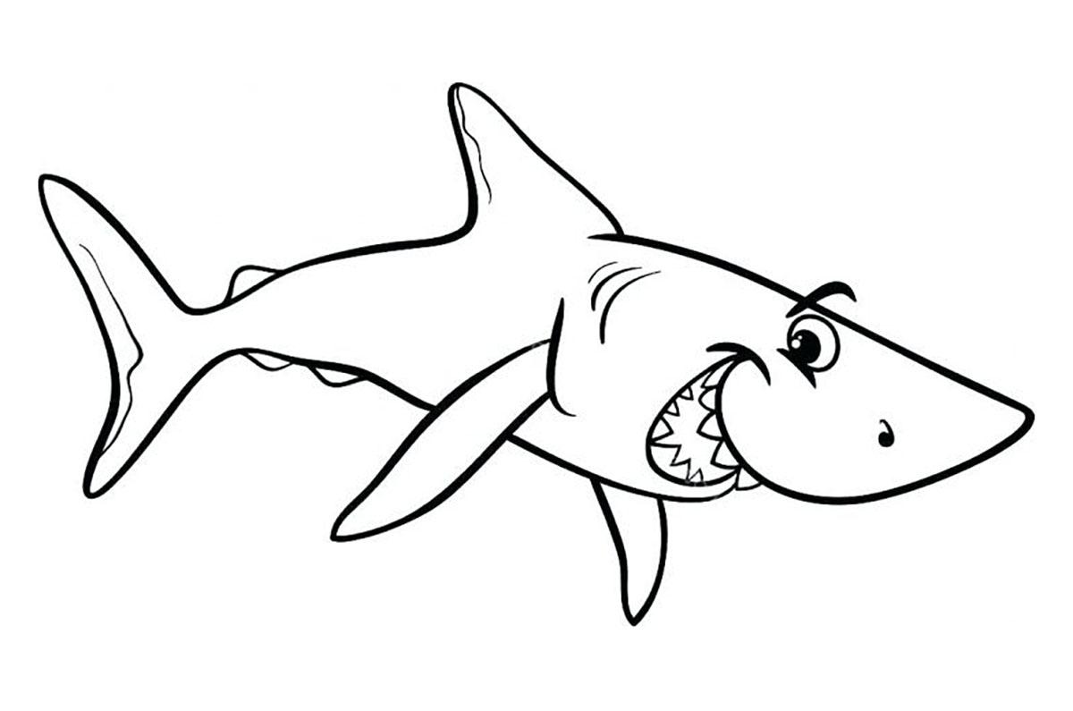 Tranh cho bé tô màu con cá mập 6