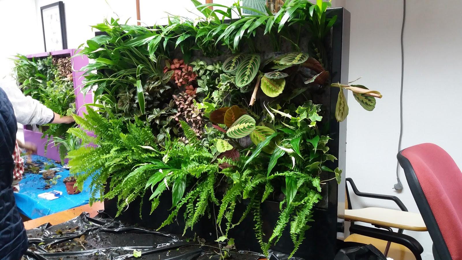 Jardines verticales y cubiertas vegetales for Jardines verticales