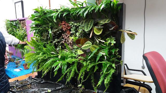 Curso jardines verticales y cubiertas vegetales