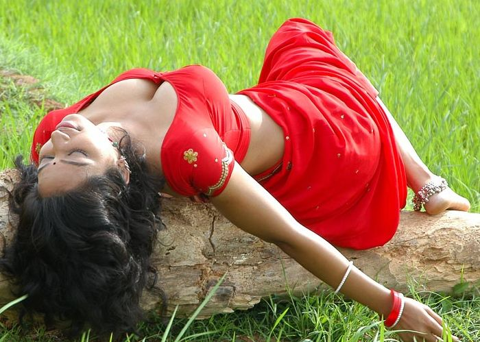 Hot Teertha Spicy Picture in Red Saree and Blouse