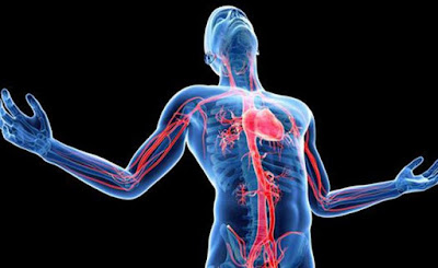 Obat Jantung Bengkak, Cara Menyembuhkan Penyakit Jantung Bengkak  Terbukti Ampuh Atasi Penyakit 100% Sampai Tuntas