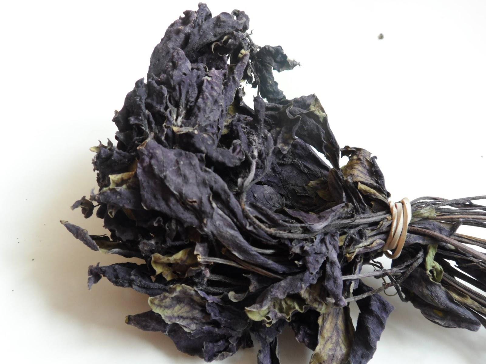 Fesleğen Çayı Neye İyi Gelir: Fesleğen Çayının Faydaları