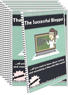 The Successful Blogger
