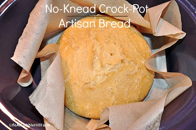I M A Er For Homemade Bread Could Eat Just It Slathered With An Entire Meal Because Of That Thrilled This Recipe You Can