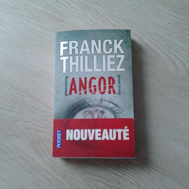 Angor de Franck Thilliez : Sharko et Henebelle au top de la forme