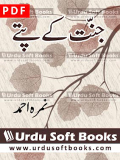 Jannat K Pattay Novel PDF