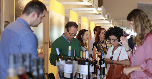 Festival do Vinho do Douro Superior: o balanço final - mais 8.000 visitantes