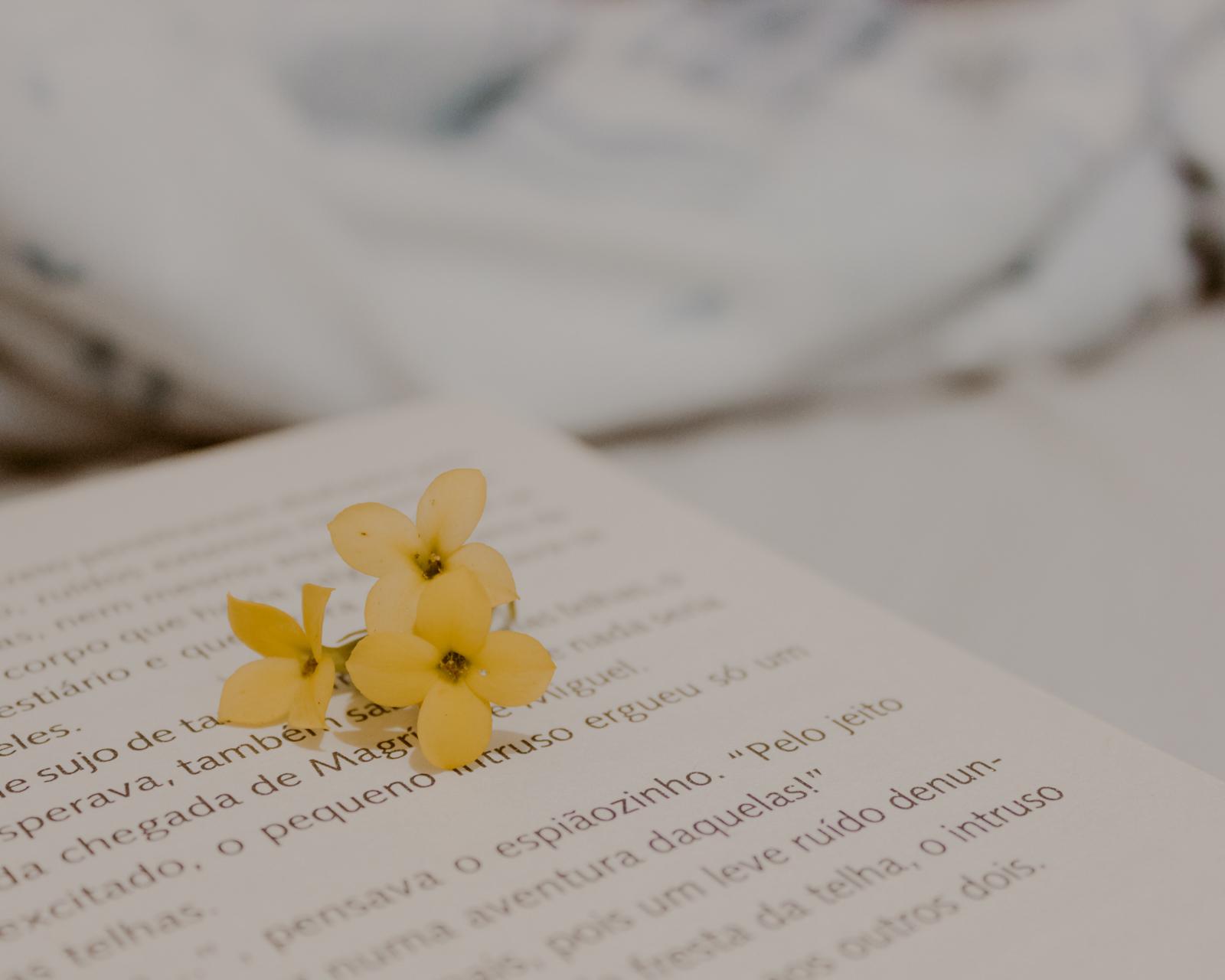 flor amarela e livro na cama