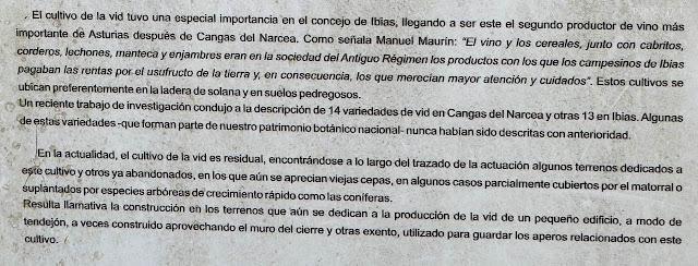 Panel Informativo cultivo de la vid - Ibias - Asturias