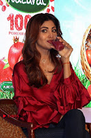 Bollywood Actress Shilpa Shetty Stills in Tight Jeans at Launch Of   0010.jpg