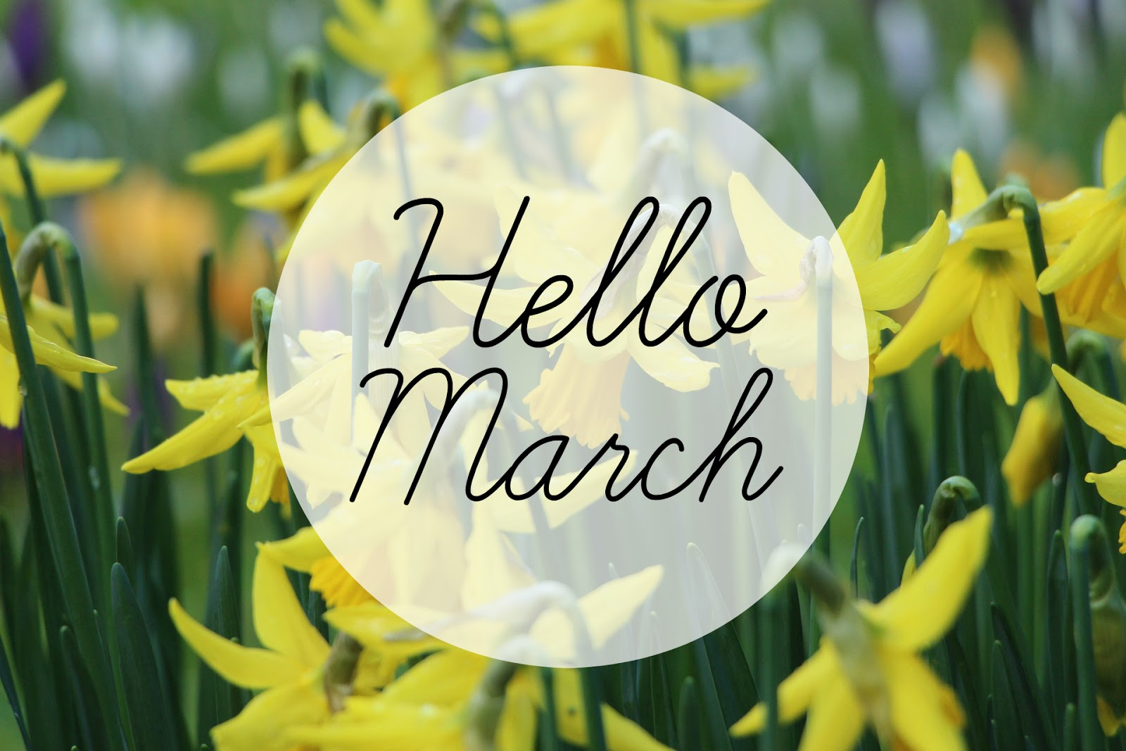 Formidable Joy | Formidable Joy Blog | Lifestyle | March | Hello March