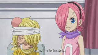 One Piece Episode 803 sub indo