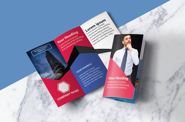 Free Brochure Templates Design In Illustrator