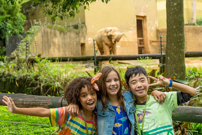 O Zoo da Zu (Foto: Kelly Fuzaro)