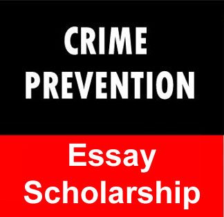 Crime prevention strategies essay