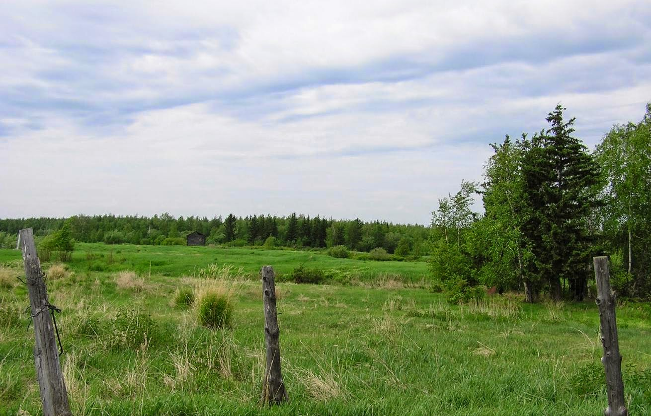 Granja y taiga en Saja, Siberia Oriental