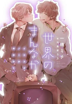 light novels Yes ka No ka Hanbun ka