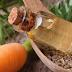 Singurul ulei natural care vindecă vergeturile, bătăturile și psoriazisul
