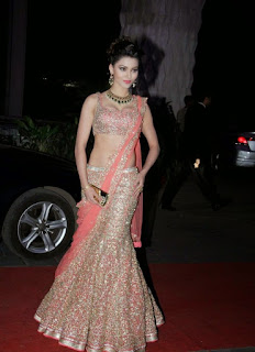 Urvashi Rautela in Sexy Pink Saree