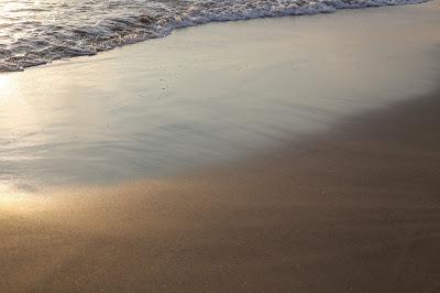 太平洋 海 朝日 砂浜