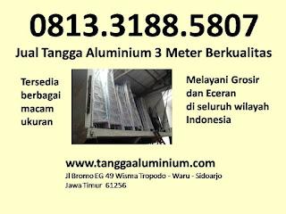 Jual Tangga Aluminium 3 Meter