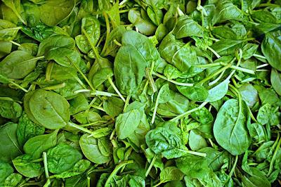 Cara Memasak Sayur Bayam dan Manfaatnya Untuk Kesehatan