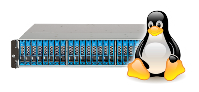 Features You May Expect If You Choose Linux Hosting in India