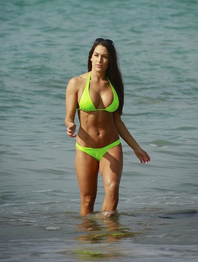 The Bella Twins - Brianna and Nicole Garcia-Colace in Bikinis on the Beach in LA
